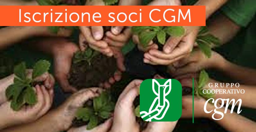 SOCI 2 GCM